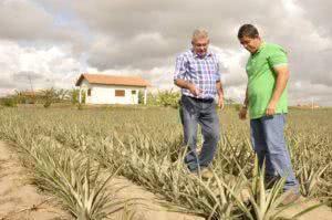 modelo-de-contrato-de-parceria-agricola