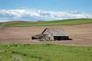modelo-de-contrato-de-arrendamento-de-imovel-rural