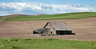 Modelo de contrato de arrendamento de imóvel rural